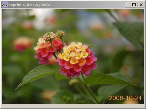 How to imprint date on photo?
